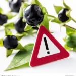 vorsicht-giftpflanze-596x640